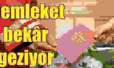 Sinop bekar sıralamasında 7. sırada yerini alıyor