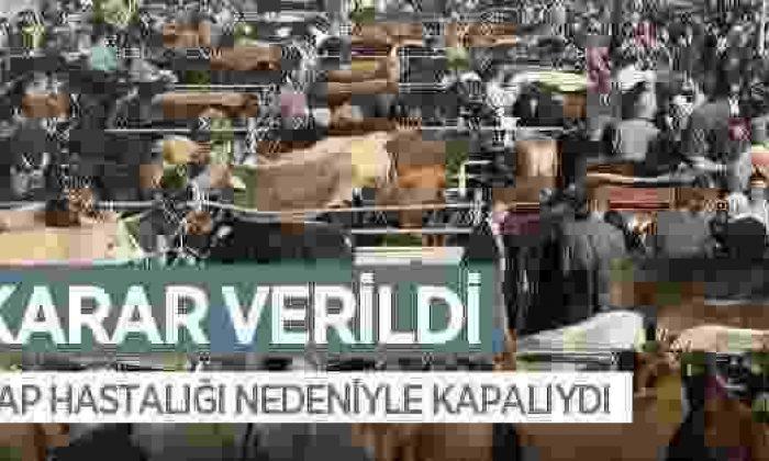 Boyabat Hayvan Pazarı Tekrar Açılıyor