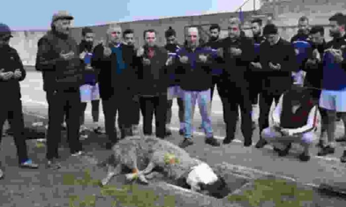 Sinopspor Kurban Keserek Hazırlıklara Başladı