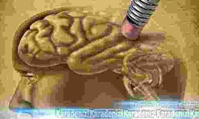 Alzheimer'ı önlemek için bunları yiyin