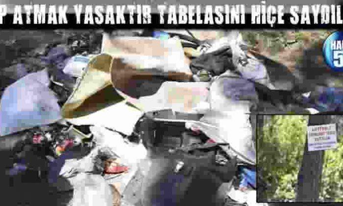 Çöp Atmak Yasaktır Tabelasını Hiçe Saydılar