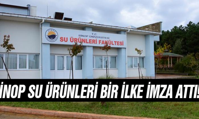 Sinop Su Ürünleri Bir İlke İmza Attı!