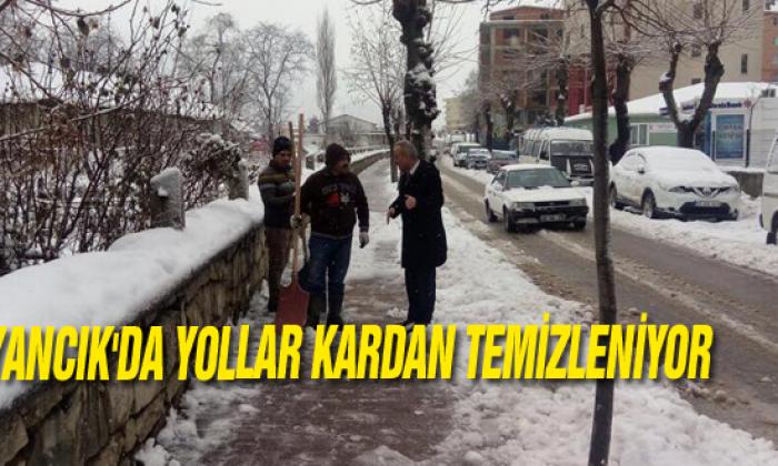 Ayancık'da Yollar Kardan Temizleniyor