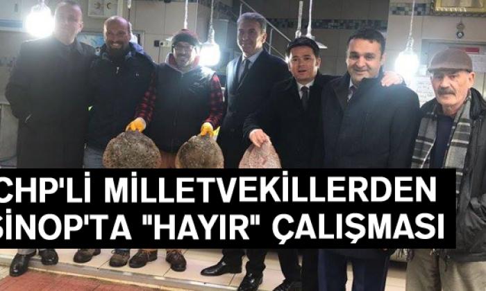 """Chp'li Milletvekillerden Sinop'ta """"Hayır"""" Çalışması"""