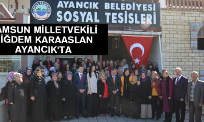 Samsun Milletvekili Çiğdem Karaaslan Ayancık'ta
