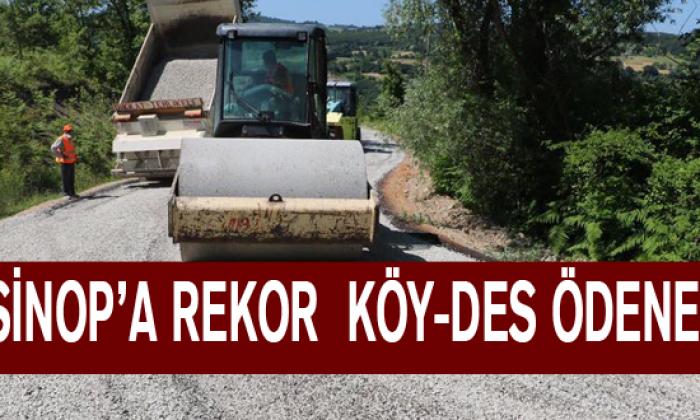 Maviş Müjdeyi Verdi: Sinop'a Rekor Köy-Des Ödeneği