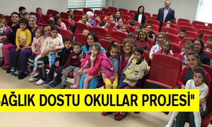 """""""Sağlık Dostu Okullar Projesi"""""""