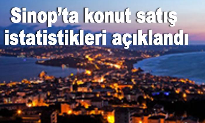 Sinop'ta konut satış istatistikleri açıklandı
