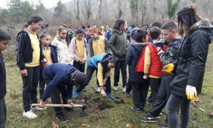 Ayancık Orman İşletme'den 500 Fidan, 500 Öğrenci Projesi