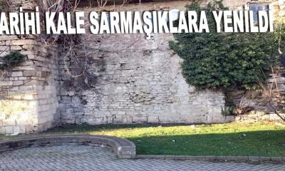 Tarihi kale sarmaşıklara yenildi