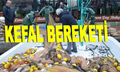 """Balıkçılara """"kefal"""" piyangosu"""