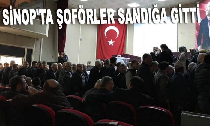 Sinop'ta şoförler sandığa gitti