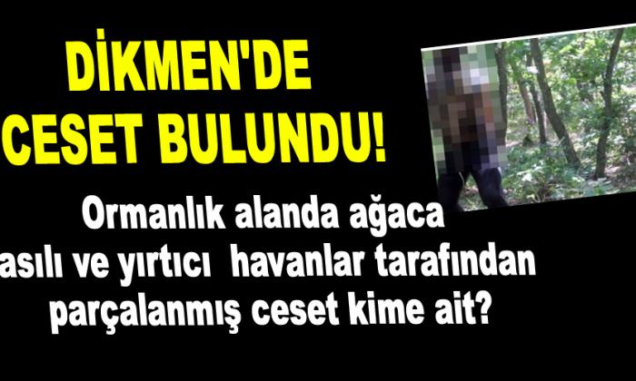 DİKMEN'DE CESET BULUNDU