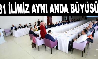 Sinop'un ekonomik beklentileri masada