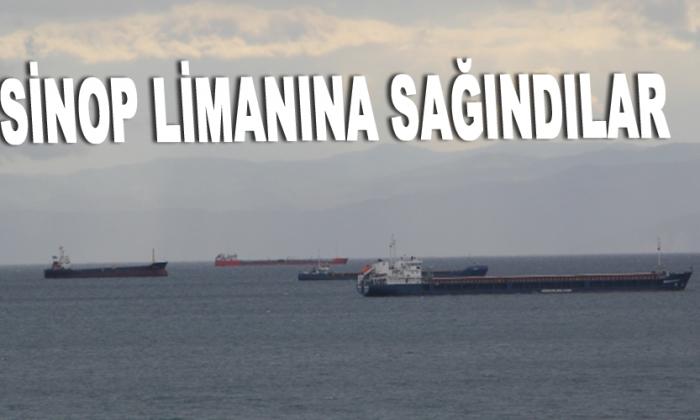 Sinop Limanına sağındılar