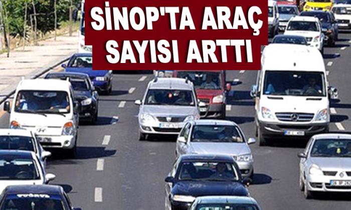 Sinop'ta araç sayısı arttı