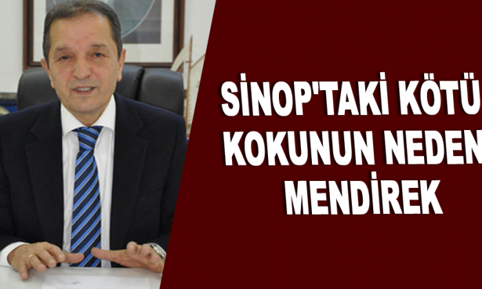 Sinop'taki kötü kokunun nedeni mendirek