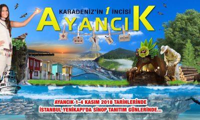 Sinop Tanıtım Günleri