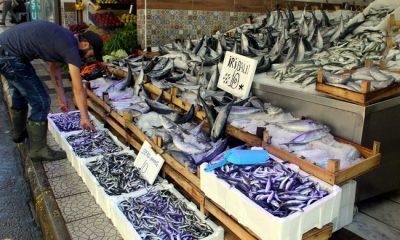 Balıkçılar bu yıl hamsiden umutlu