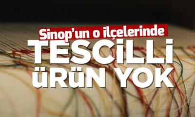 Sinop'un Türkeli ve Dikmen İlçelerinde Tescillenmiş Ürün Bulunmuyor