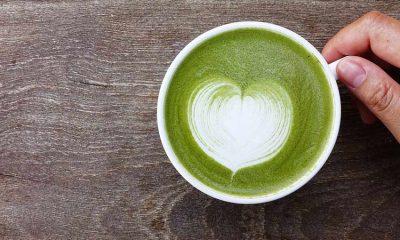 Matcha nedir? Maça çayı nasıl kilo verdirir? Zayıflatır mı?