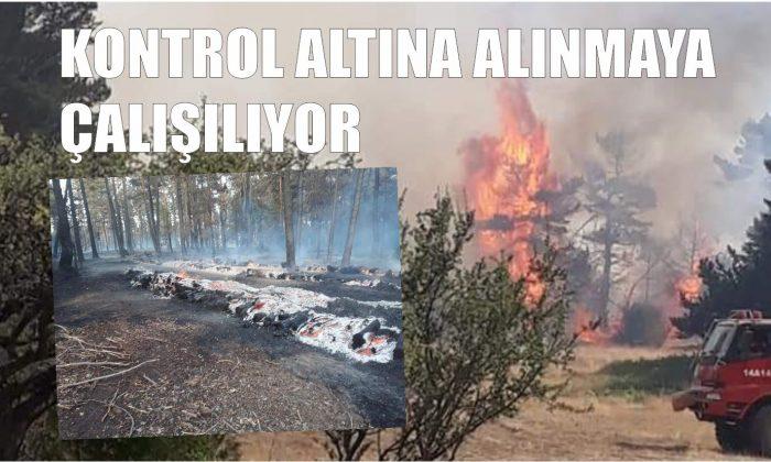 Yangın Kontrol Altına Alınmaya Çalışıyor