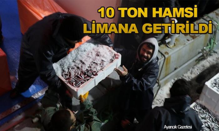 Sinop'tan Açılan Balıkçılar 10 Ton Hamsiyle Döndü