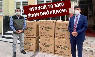 Ayancık'ta 3000 fidan dağıtıldı