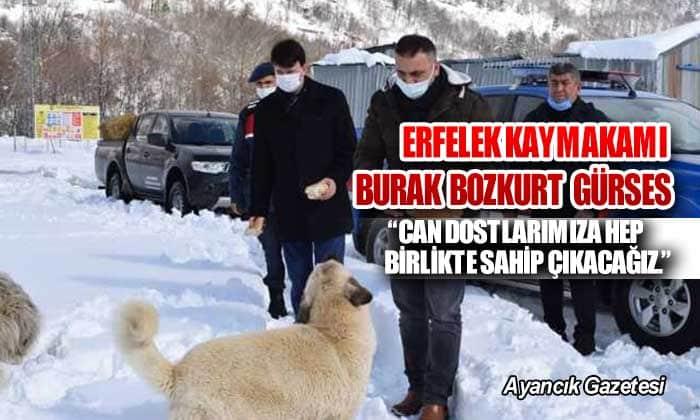 """""""CAN DOSTLARIMIZA HEP BİRLİKTE SAHİP ÇIKACAĞIZ."""""""