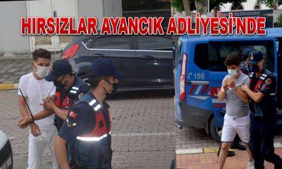 Ayancık'ta Hırsızlar Yakalandı