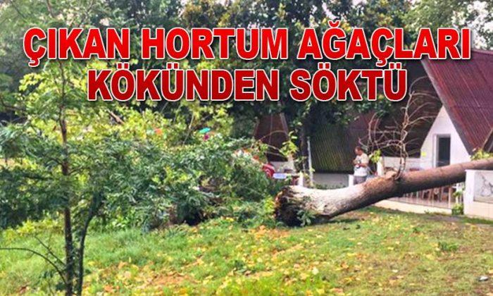 ÇIKAN HORTUM SOSYAL TESİSİ VURDU