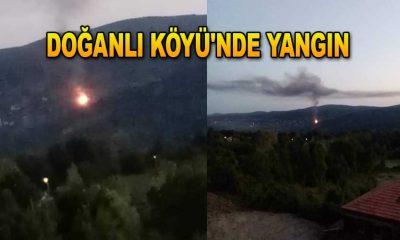 Doğanlı Köyü'nde Yangın