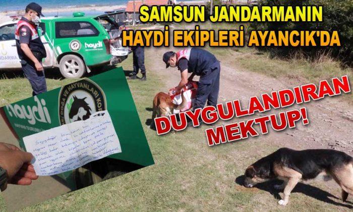 """Samsun Jandarma """"HAYDİ"""" Ekipleri Ayancık'ta"""