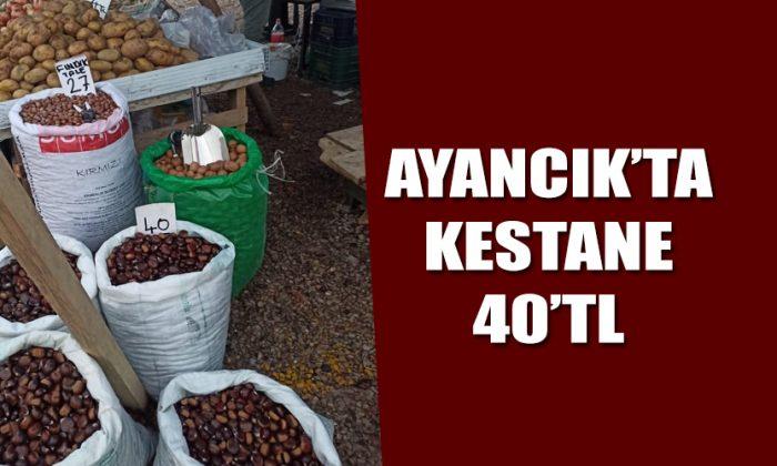 KESTANE 40TL